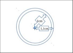 Cellule de comptage des Daphnies