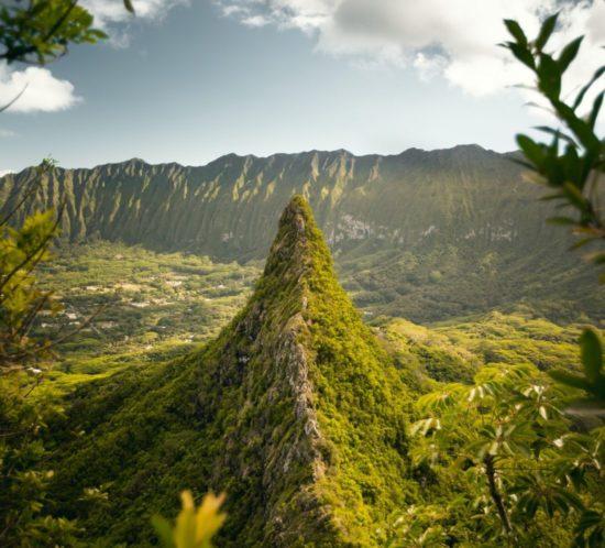Hawaï congrès